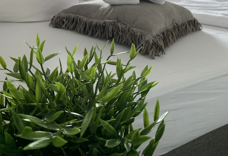 โรงแรมเรซิเดนซ์ กีสเซิน, กีสเซิน, ห้องเบสิกดับเบิลสำหรับพักเดี่ยว, ห้องพัก