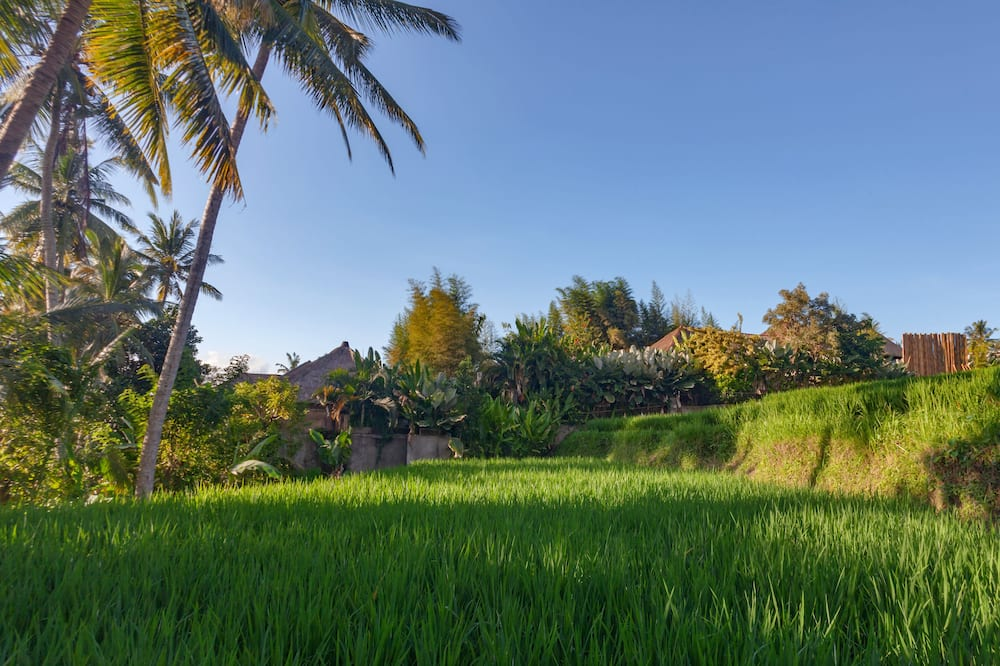 Deluxe Two bedroom villa with private pool - Garden View