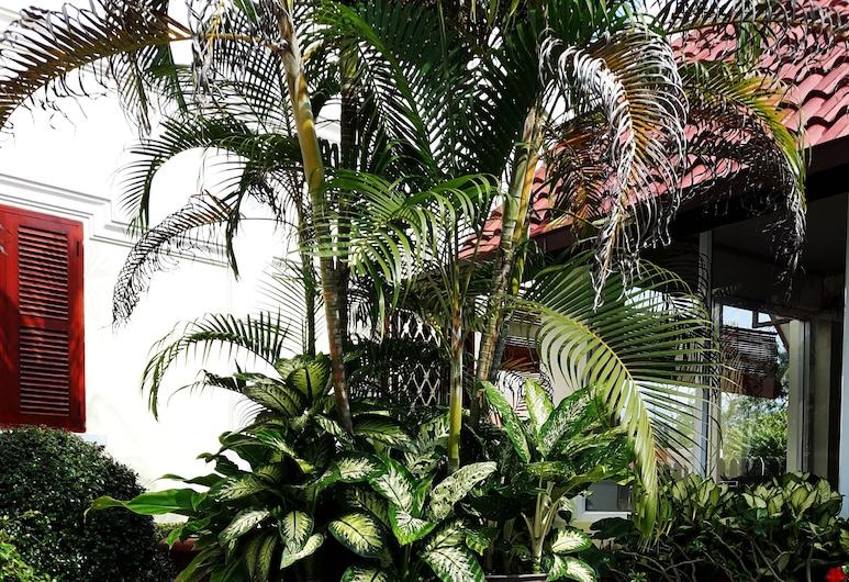 Phonepraseuth Guesthouse, Luang Prabang, Property Grounds