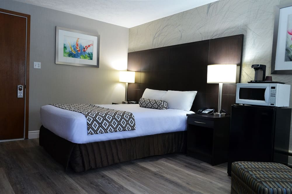 Standard Single Room, 1 Queen Bed, Non Smoking - Living Area