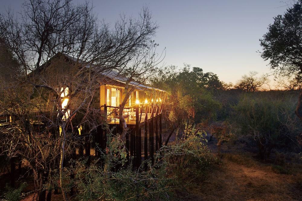 Luxury-Zelt (Buffalo Camp) - Zimmer