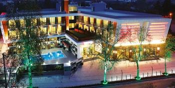 Gambar Lova Hotel SPA di Yalova
