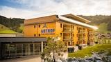 Schattwald hotels,Schattwald accommodatie, online Schattwald hotel-reserveringen