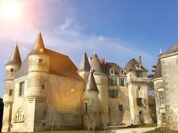 Picture of Château de La Celle Guenand in Indre-et-Loire (department)