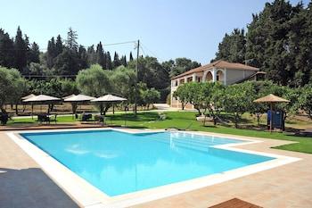 Picture of Eleas Gi in Zakynthos