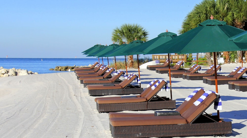 book dreamview beachfront hotel resort in clearwater. Black Bedroom Furniture Sets. Home Design Ideas