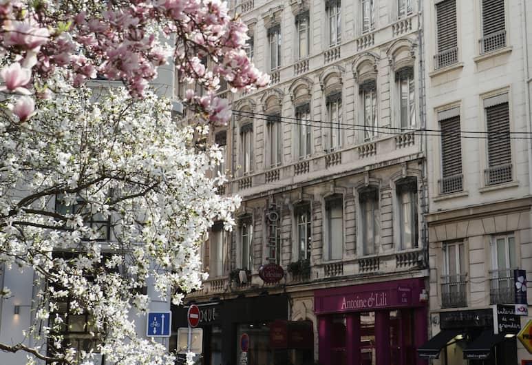 Hôtel des Célestins, Lyon, Façade de l'hôtel