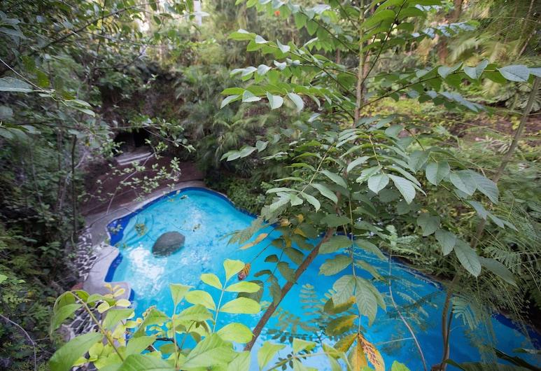 Hotel Jacarandas, Cuernavaca, Piscina cubierta o al aire libre