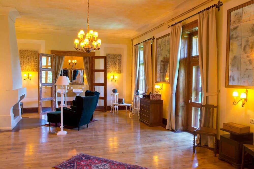 豪華開放式套房, 壁爐 - 客廳