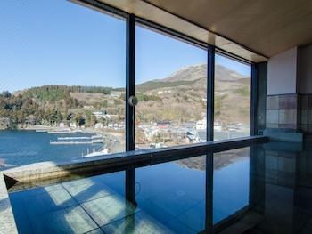 箱根武藏屋酒店的圖片