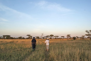 Picture of Ikoma tented Camp in Serengeti National Park