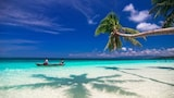 Hoteller i Carabao Island