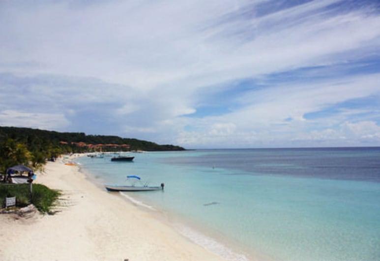 Coconut Tree West Bay, Roatan, Plaj