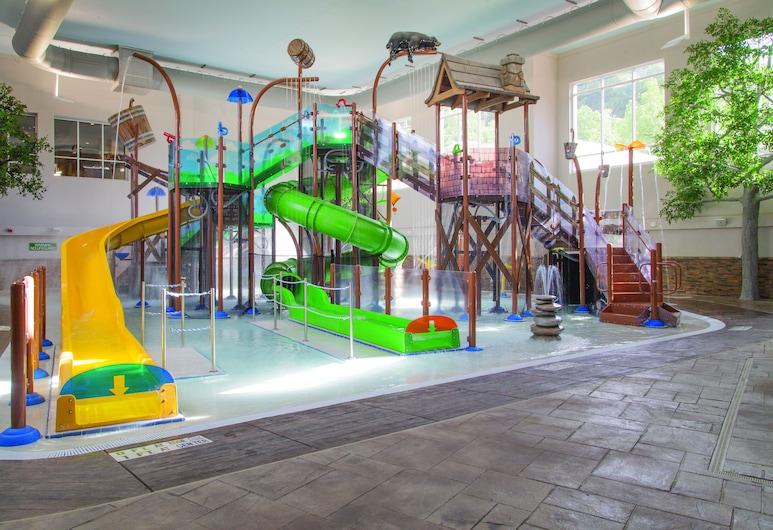 蓋特林堡市中心智選假日酒店, 加特林堡, 滑水梯