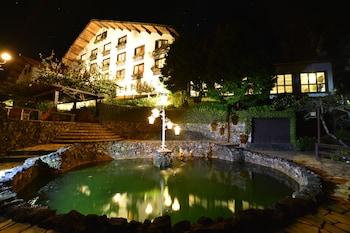 蒙特維多馬伊森霍夫酒店的圖片