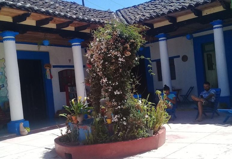 Hostal La Casa de Paco - Hostel, San Cristóbal de las Casas, Habitacion Privada Cuadruple Bano Compartido, Terraza o patio