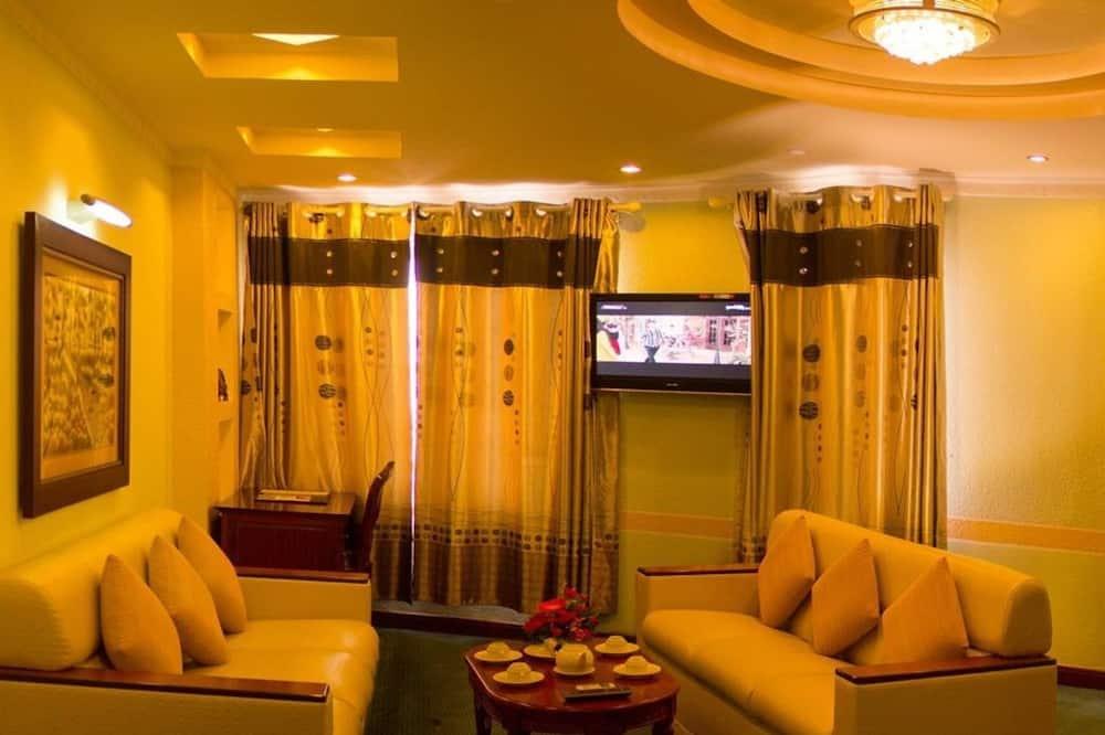 客房 ( VIP ) - 客廳