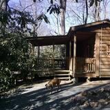 Chatka (Woodland) - Izba