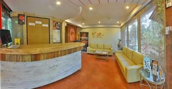 תמונה של Hotel Viva Baga בבאג'ה