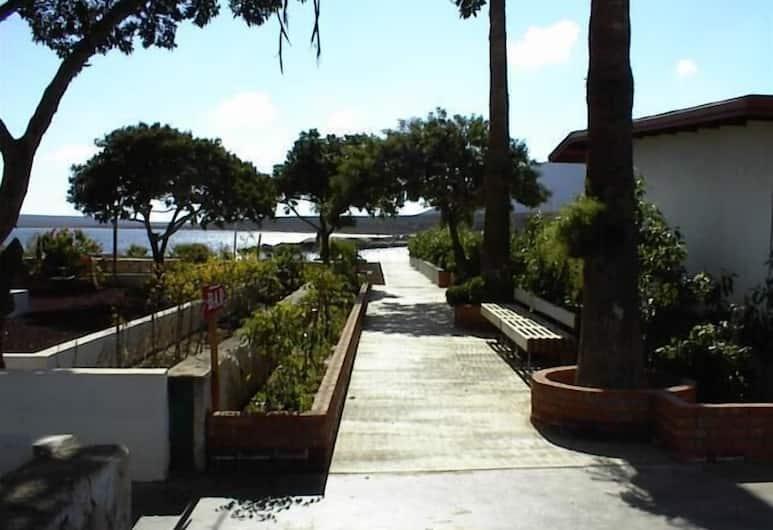 Don Eddie's Landing, San Quintin, Property Grounds