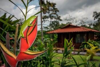 Fotografia do Hotel Rancho Cerro Azul em La Fortuna