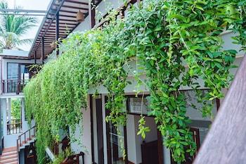 ภาพ Riverside Plum Garden Homestay ใน ฮอยอัน