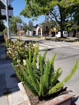 Picture of Sens Hotel & Vanne Bistro Berkeley in Berkeley