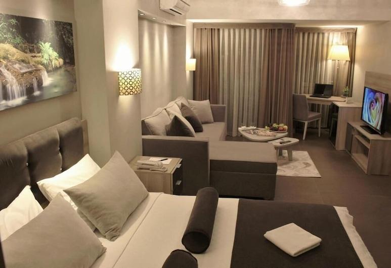 BC Pangaldi, Κωνσταντινούπολη, Deluxe Δίκλινο Δωμάτιο (Double), Δωμάτιο επισκεπτών