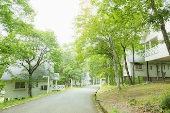 高山莊川高原村酒店的圖片