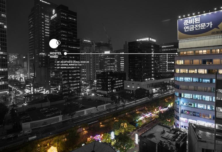 哈魯青年旅舍, 首爾, 飯店入口 - 夜景