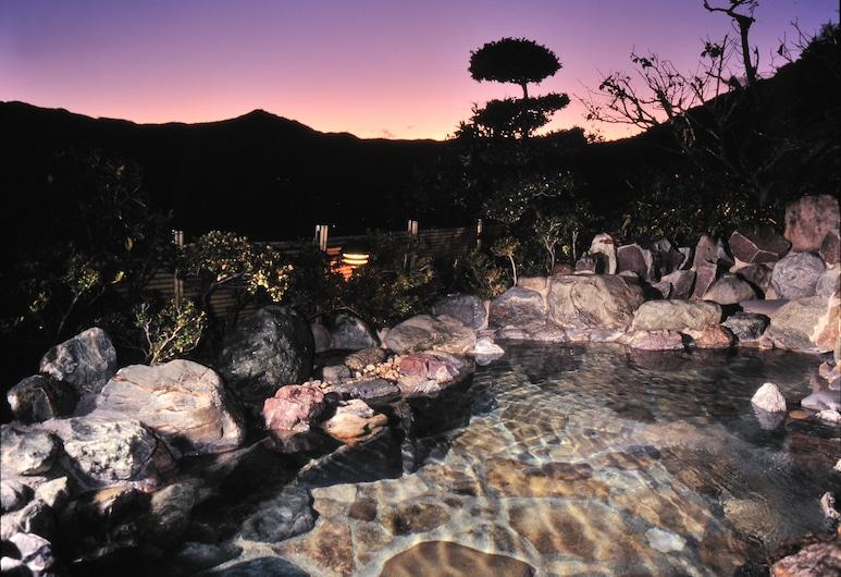 Hotel Chobo Sanso, Yugawara, Natural Pool