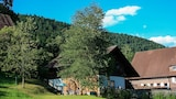 Picture of Vacation Apartment in Alpirsbach 8411 by RedAwning in Alpirsbach