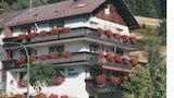 Picture of Vacation Apartment in Enzkloesterle 8316 by RedAwning in Enzklosterle