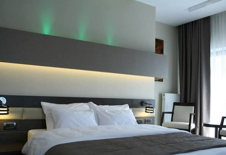 Scapino Hotel, Constanta, Basic Double or Twin Room, 1 Bedroom, Lake View, Guest Room