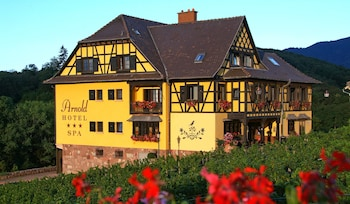 Picture of Hotel Arnold in Itterswiller