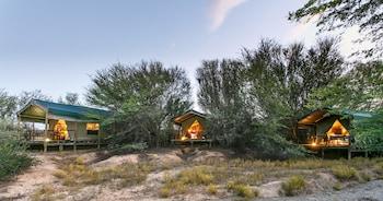 Picture of Chandelier Game Lodge in Oudtshoorn