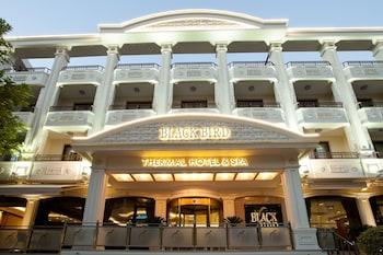 Gambar Black Bird Thermal Hotel & Spa di Yalova