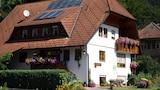 Bilde av Bad Rippoldsau Schapbach 7537 by RedAwning i Bad Rippoldsau-Schapbach