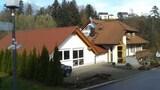 Unterkirnach hotel photo