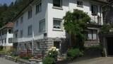 トリベルク イン シュヴァルツヴァルト、バケーション アパートメント イン トリベルク イム シュヴァルツヴァルト 7594 バイ レッドオーニングの写真