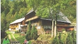Picture of Triberg im Schwarzwald 8317 by RedAwning in Triberg im Schwarzwald