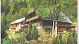 Bilde av Triberg im Schwarzwald 8317 by RedAwning i Triberg im Schwarzwald