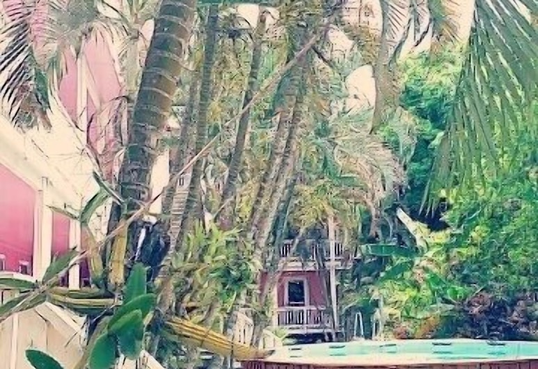 Hotel La Quinta Roatan, Roatan, Kültéri medence