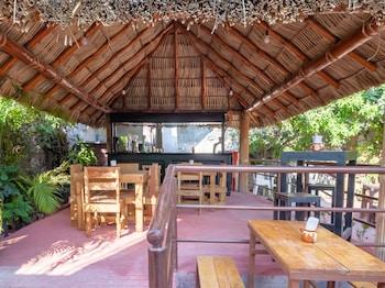 庫埃納瓦卡天堂花園水療酒店的圖片