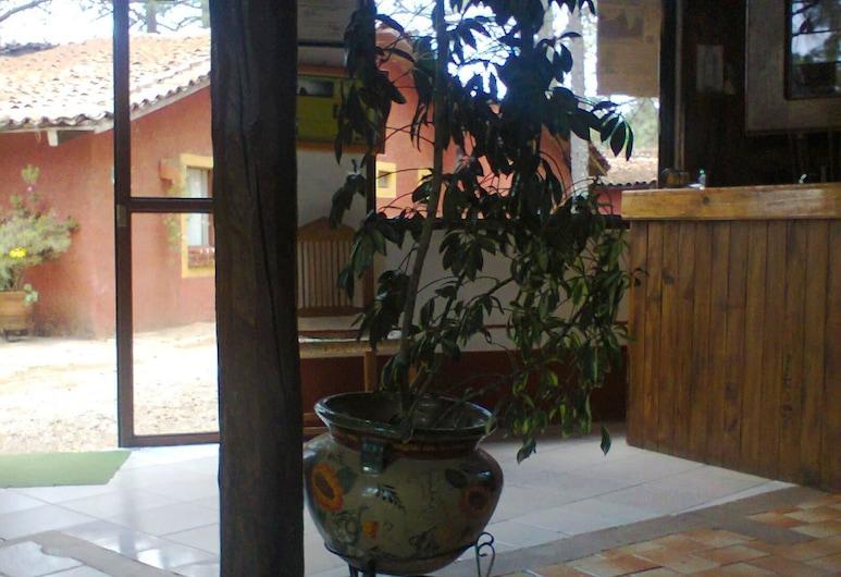 Cabaña 23 San Francisco, Tapalpa, Lobby