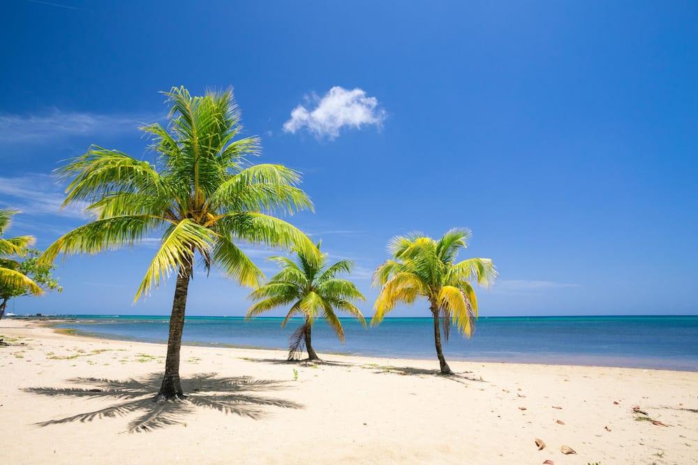 Condo, 3 Bedrooms, Ocean View - Beach