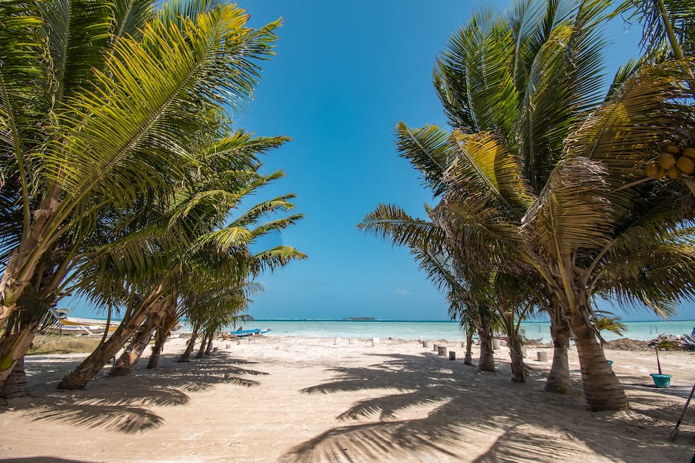 Habitación estándar, vista al mar - Vista a la playa o el mar