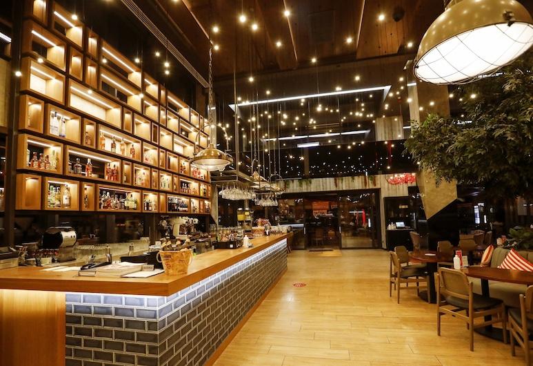 Holiday Inn Kayseri - Duvenonu, Kayseri, Hotel Bar