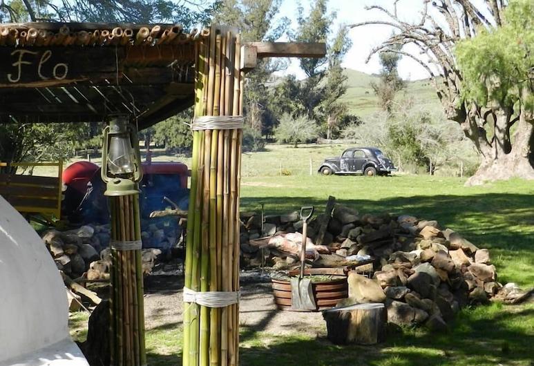 Posada de Campo El Porfiado, Minas, Kawasan Hartanah