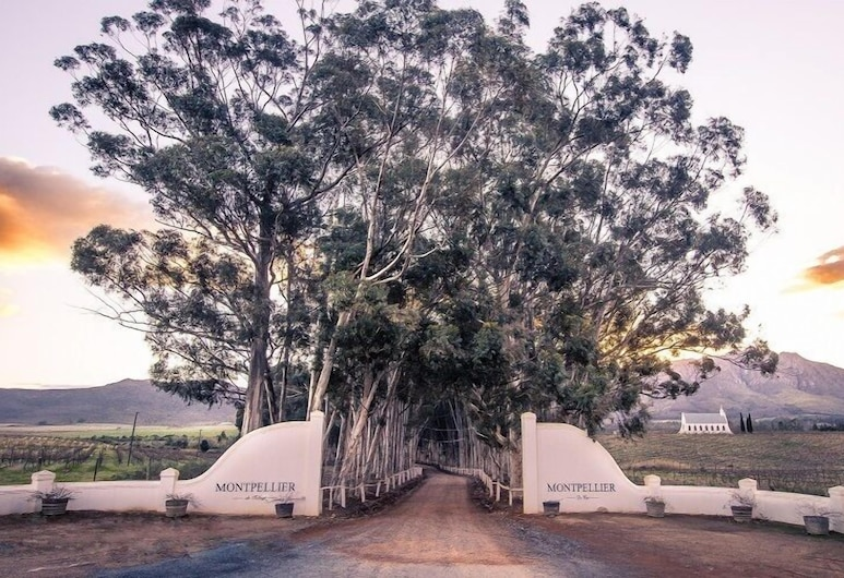 Montpellier De Tulbagh, Tulbagh